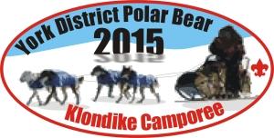 Polar Bear 2015 Patch